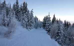 Gdzie na narty w Szklarskiej Porębie?